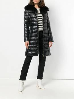 Herno - hooded padded coat 656DIC90693936805090