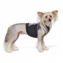 Misbhv Black Active Dog T-Shirt 020D010
